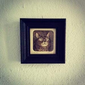 Katzencontent